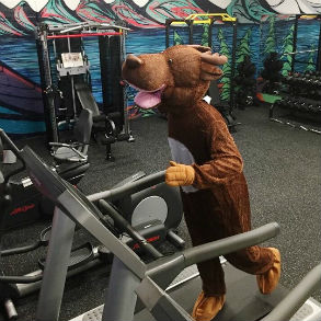 Looks like the #D2LMoose might be breaking a sweat! ? We're pumped to have access to a 24/7 gym at our headquarters in Kitchener! #LifeAtD2L